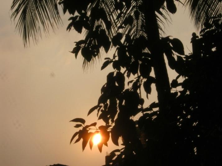 sunset 31.10.14 7