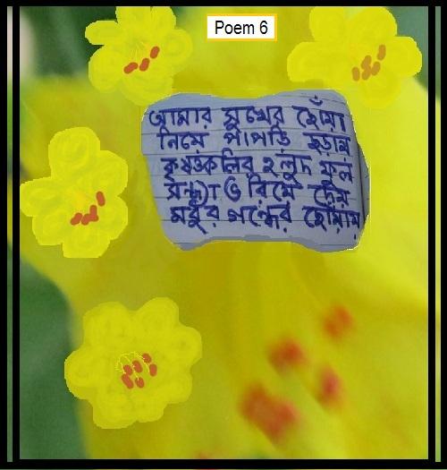 poem 6 IMG_0011