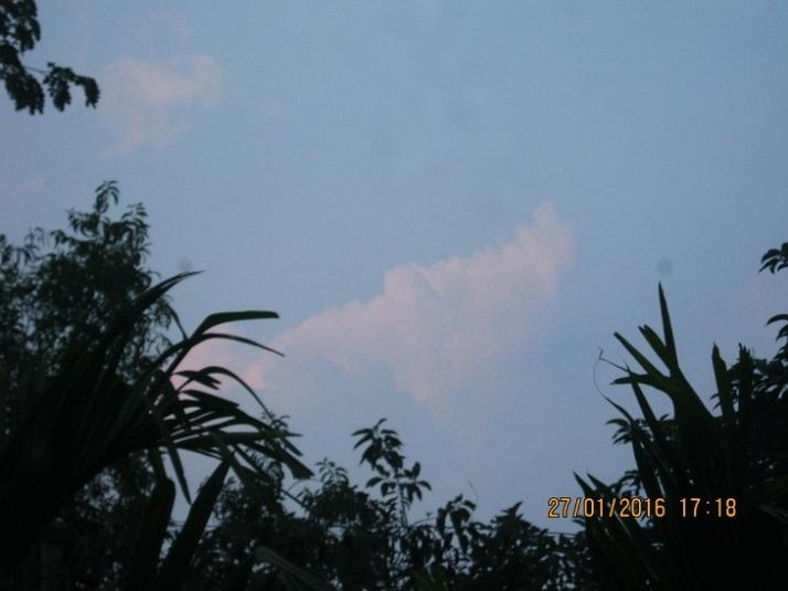 IMG_0005 27.1.16 cloud